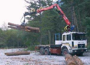 Dimostrazione lavorazione legname in campo