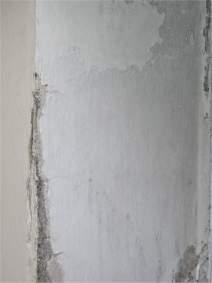 Fioritura su un muro intonacato dovuto ad infiltrazioni di acqua dal terreno